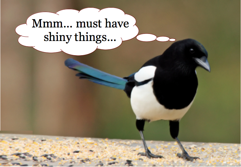 Magpie2_i-love-shiny-things